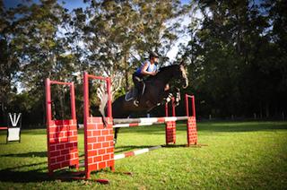 Tijdens een van mijn springlessen met Hass, mijn eventingpaard