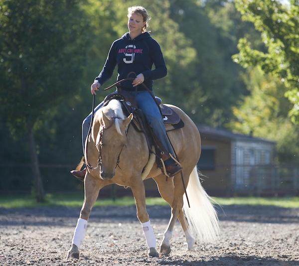 Lelymare Horses Fenna Elzinga