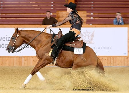 Fenna Elzinga Lelymare Horses